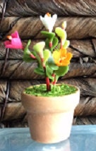 beautiful mixed colour cinneraria Fimo flowers in terracotta pots