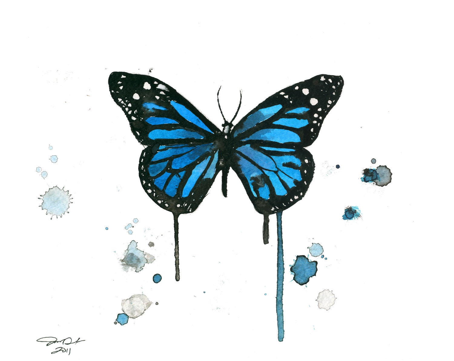 Watercolor butterfly blue galleryhip com the hippest