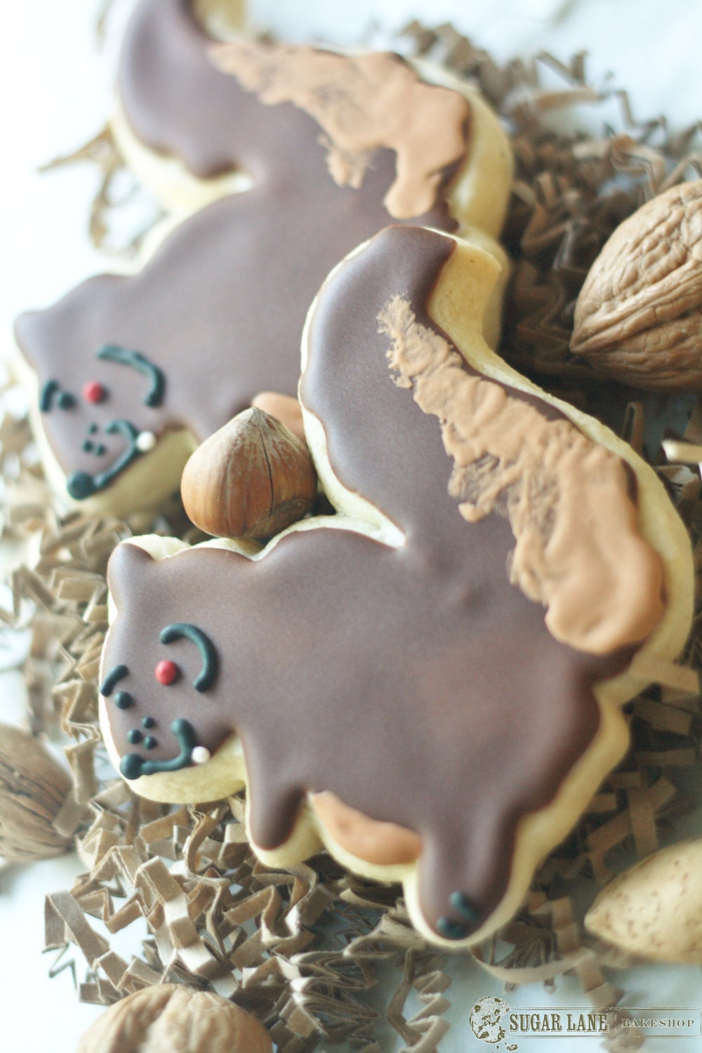 Items Similar To Large Squirrel Decorated Sugar Cookies On