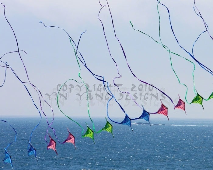 Kite Tails in the Wind - 8x10 digital photo