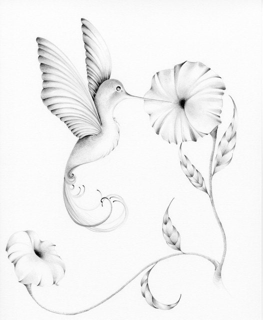 Hummingbird Custom Artwork Illustration Pencil Drawing Personalized Custom Pencil Drawing