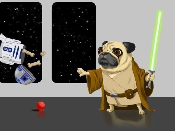 Pug Jedi dog art print - rubenacker on Etsy