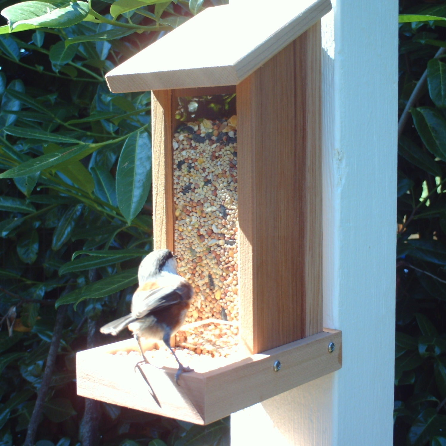 Recycled Wood Bird Feeder Post Or Wall Mount By