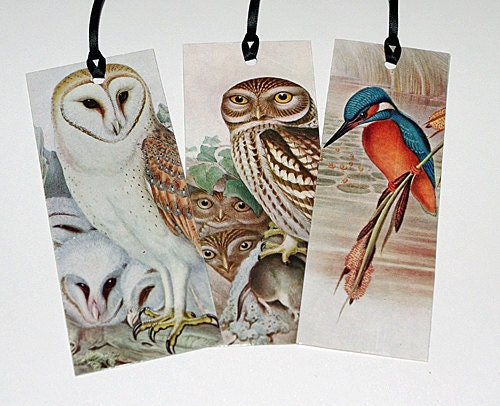 Three 1950s Bird Bookmarks - Upcycled Owl and Kingfisher Bookplates