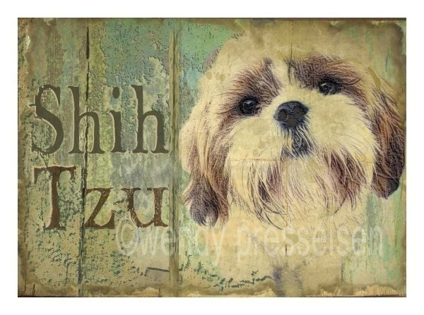 SHIH TZU Dog Art Print MODERN GRUNGE ART POSTER Signed CUTE DOG Shihtzu