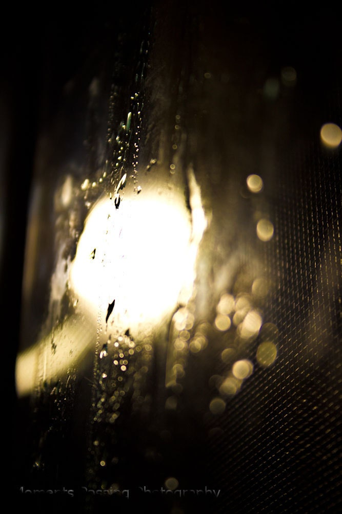 8 x 10 Fine Art Photography: Behind The Glass