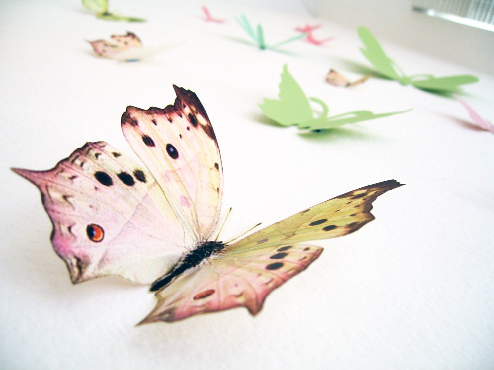 15 3d wall butterflies3d butterfly wall art by simplychiclily for 3d butterfly decoration