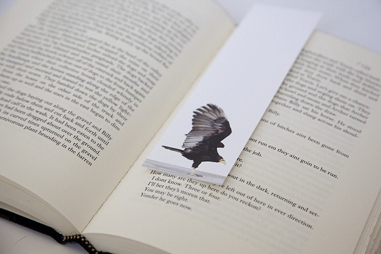 Bookmark Set - Birds