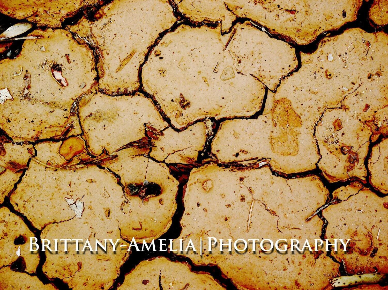 Cracked Earth-Original Photograph