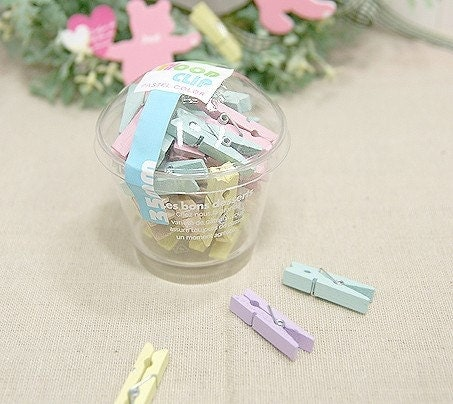 Pastel Wood pinch with plastic cup (40pcs)