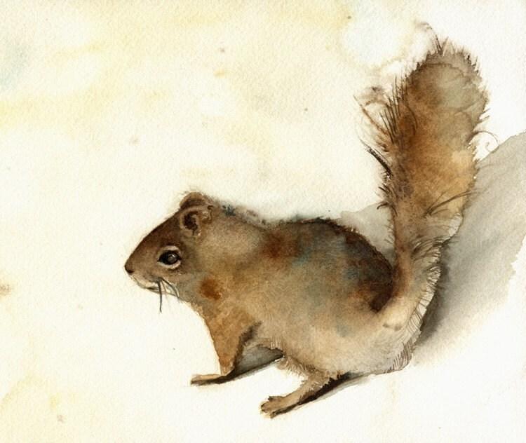 Squirrel print of watercolor
