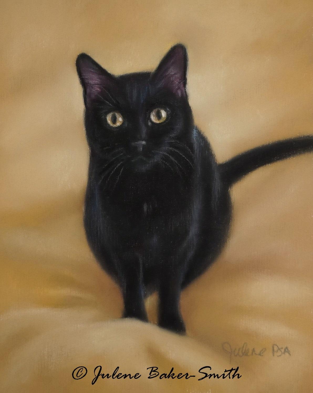 Футболка Черная кошка купить в Москве: цены 49