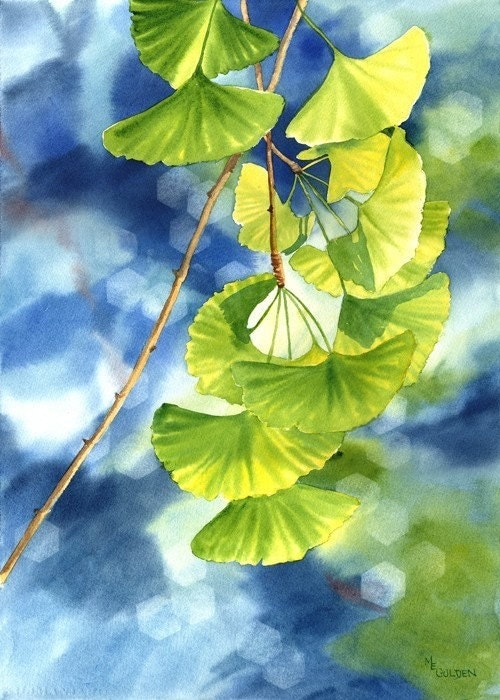 Ginkgo Watercolor Giclee Print