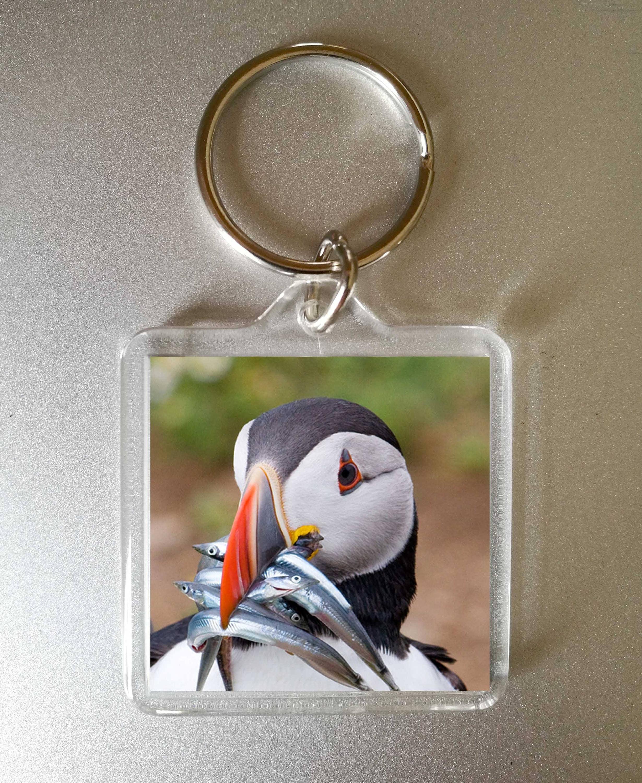 puffin keyring  photo gift  puffin  custom photo gift  picture keyring  puffin keychain  auk keyring  bird keyring