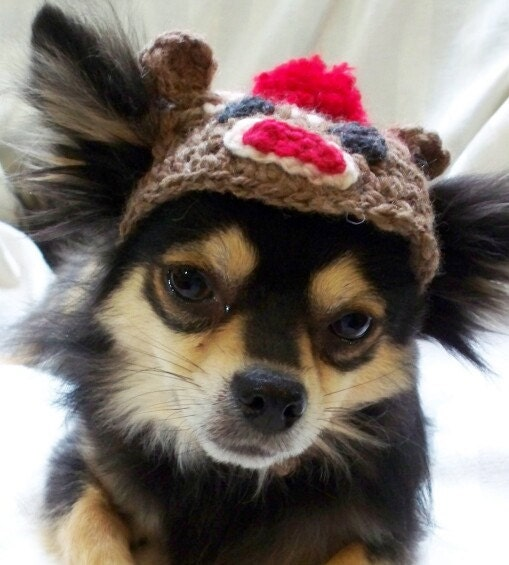 Sock Monkey crocheted dog hat