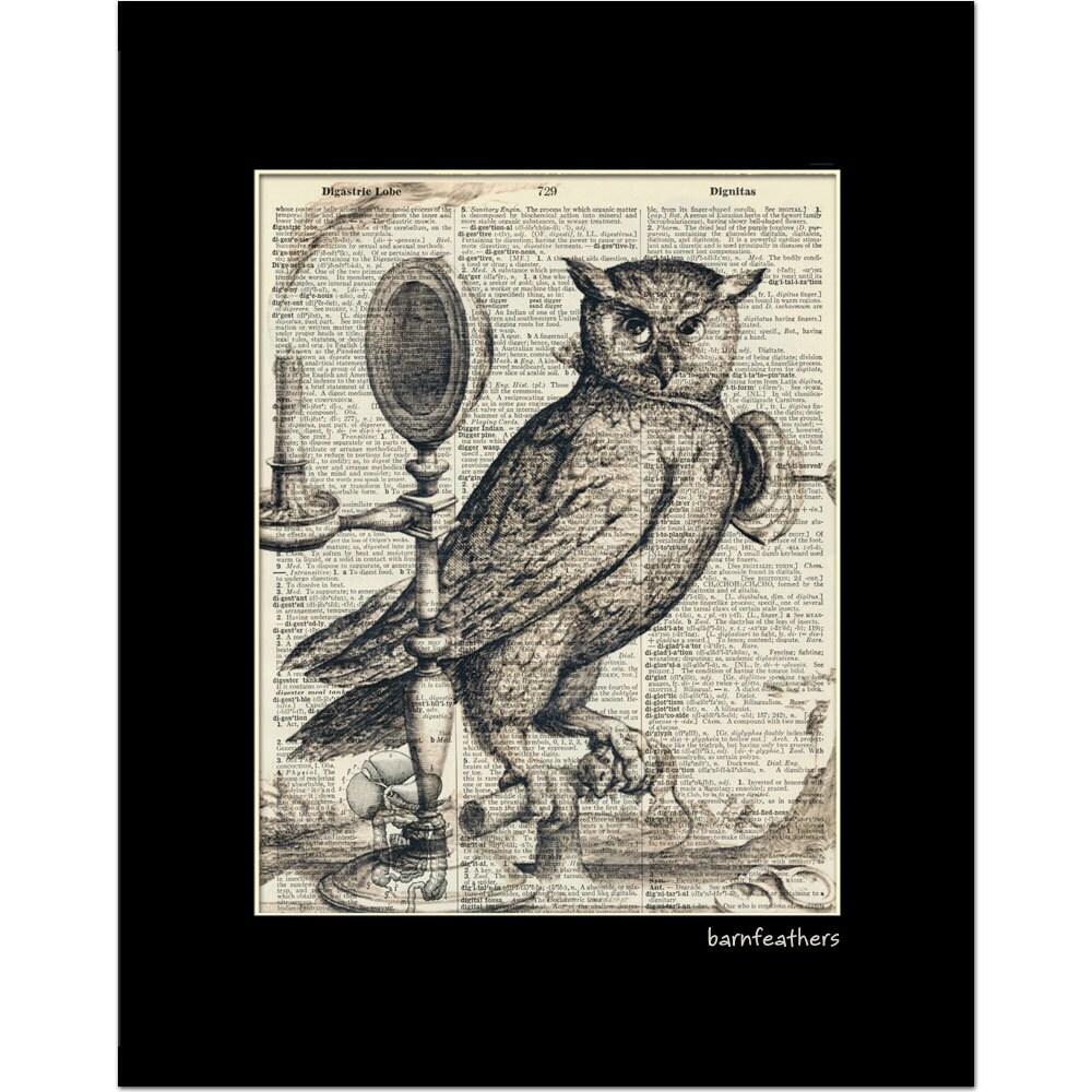 Vintage owl art prints