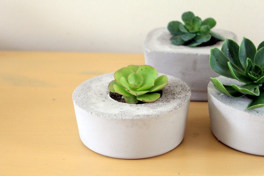 Indoor/Outdoor and Awesome Concrete Planter -Square-