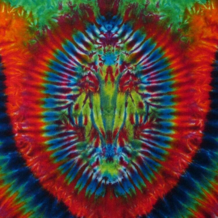 tie dye t shirt psychedelic scarab skull trippy by bigbluedyes