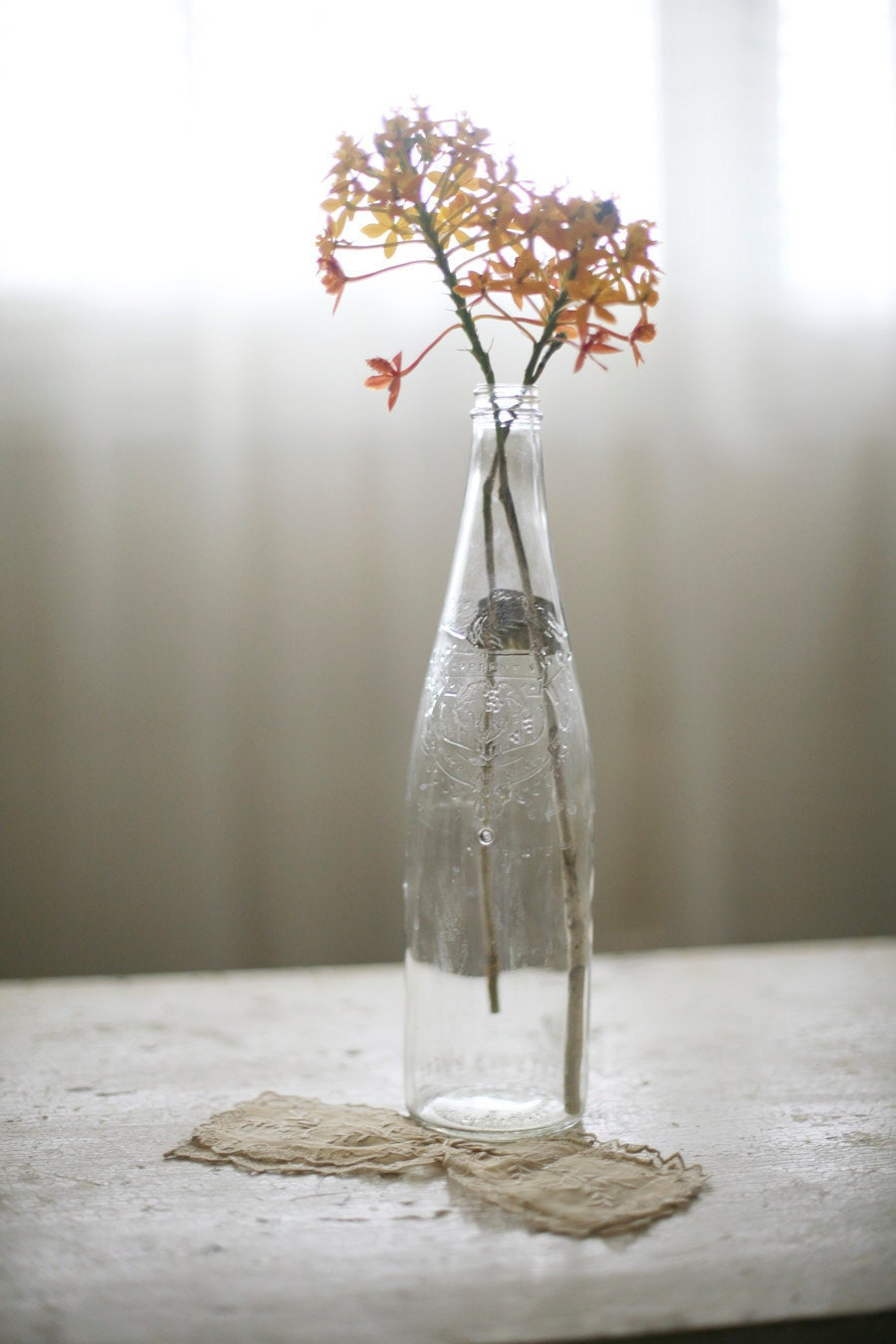 two old glass wine bottles - sadieolive