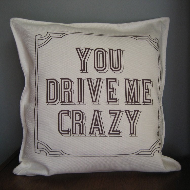 "You Drive Me Crazy  20"" Throw Pillow  Removable Cover"