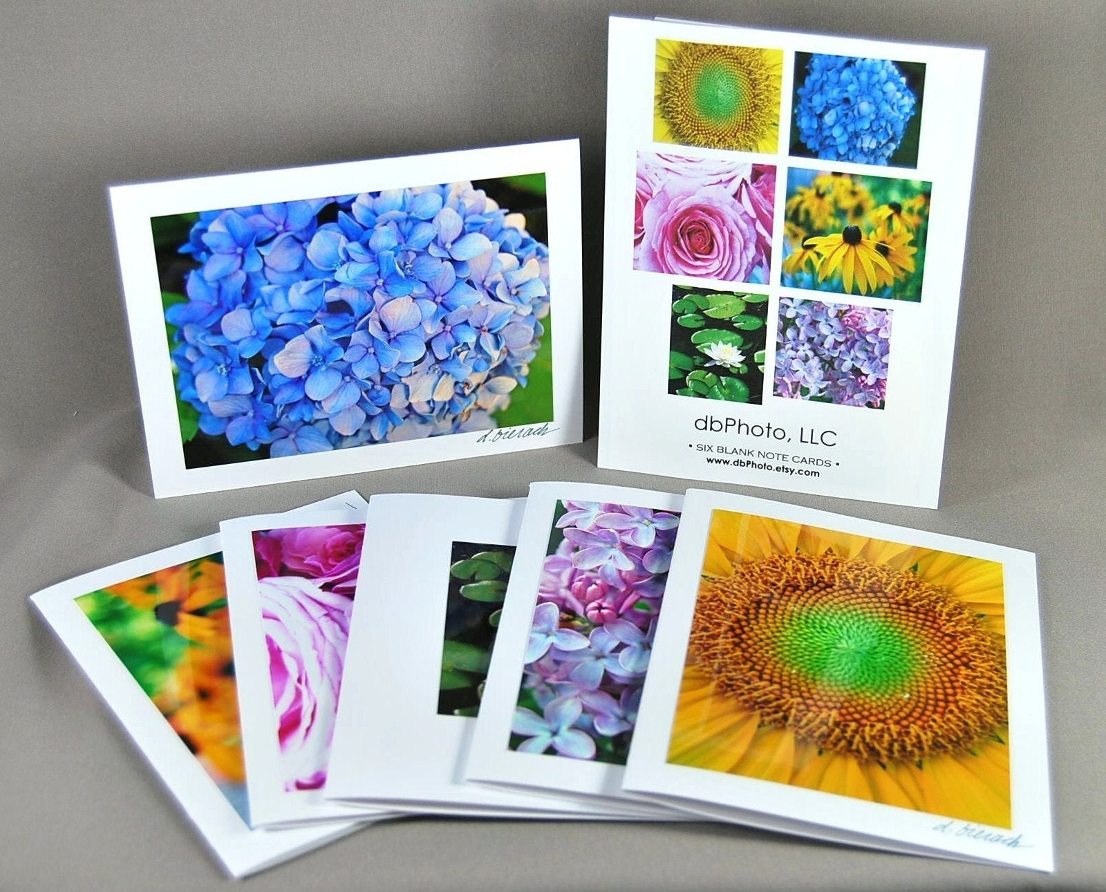 Flower Box Set (6) Cards