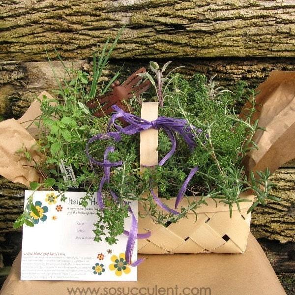 Italian Herb Garden Basket