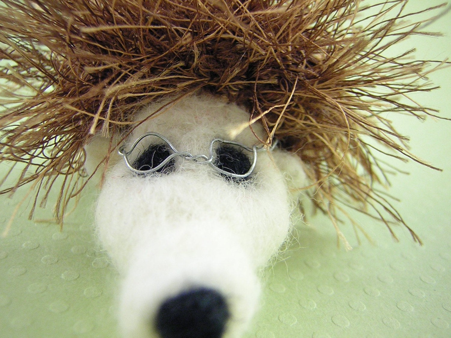 Short sighted Hedgehog with glasses