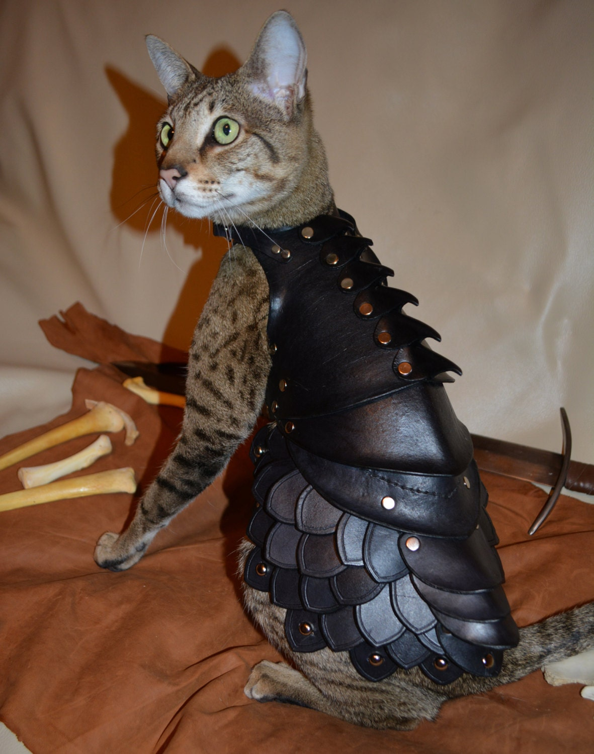 Cat Battle Armor - schnabuble
