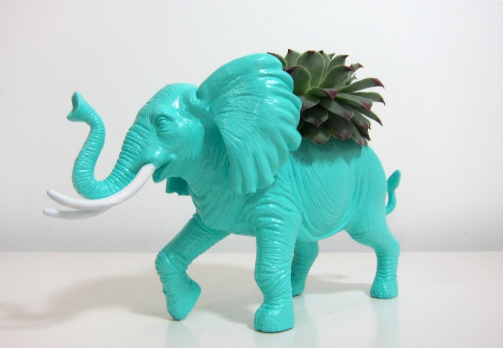 Winston the Elephant Planter & Succulent