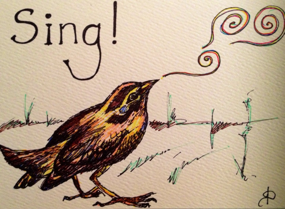 Song Bird- hand drawn greeting card - brilliantstranger