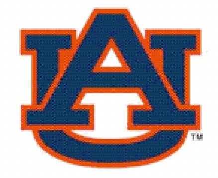 Logo Design For Colleges Auburn College Football Logo