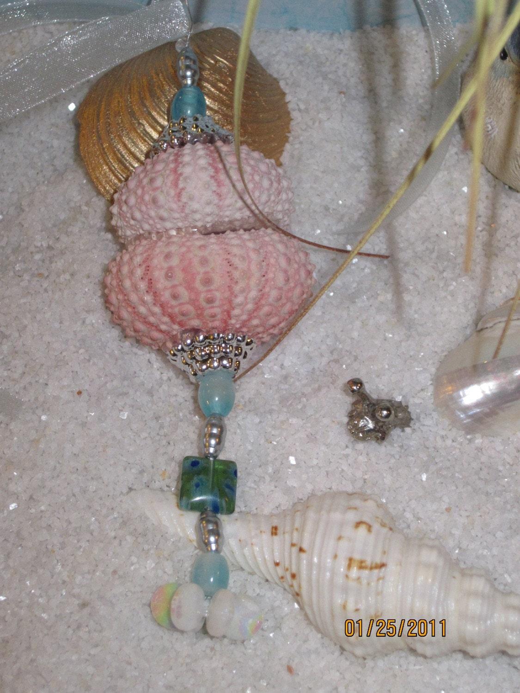 Job Sea Urchin