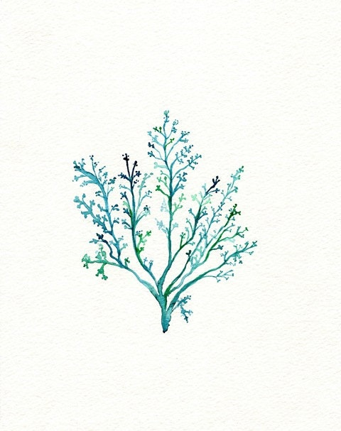 No.1 Sea Fern/ watercolor print / teal / light green / aqua / sea / ocean life / - kellybermudez