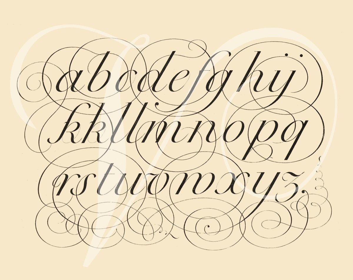 fancy calligraphy alphabet sheet wwwimgkidcom the
