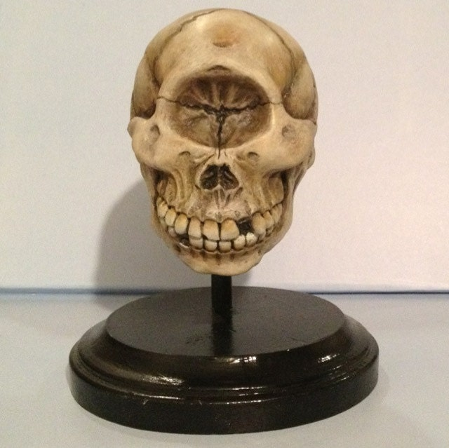 Cyclops Skull Limited Edition Collectible - Macsorro