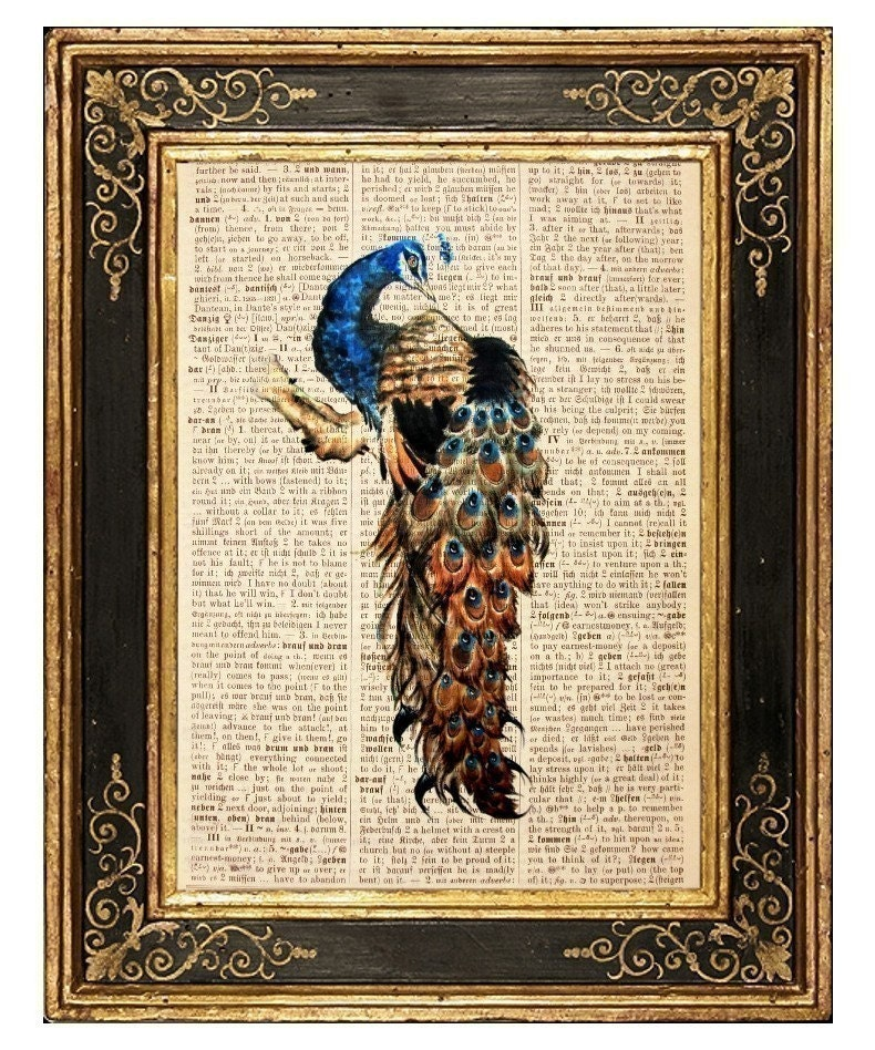 Peacock 4 - Vintage Book Page Art Print
