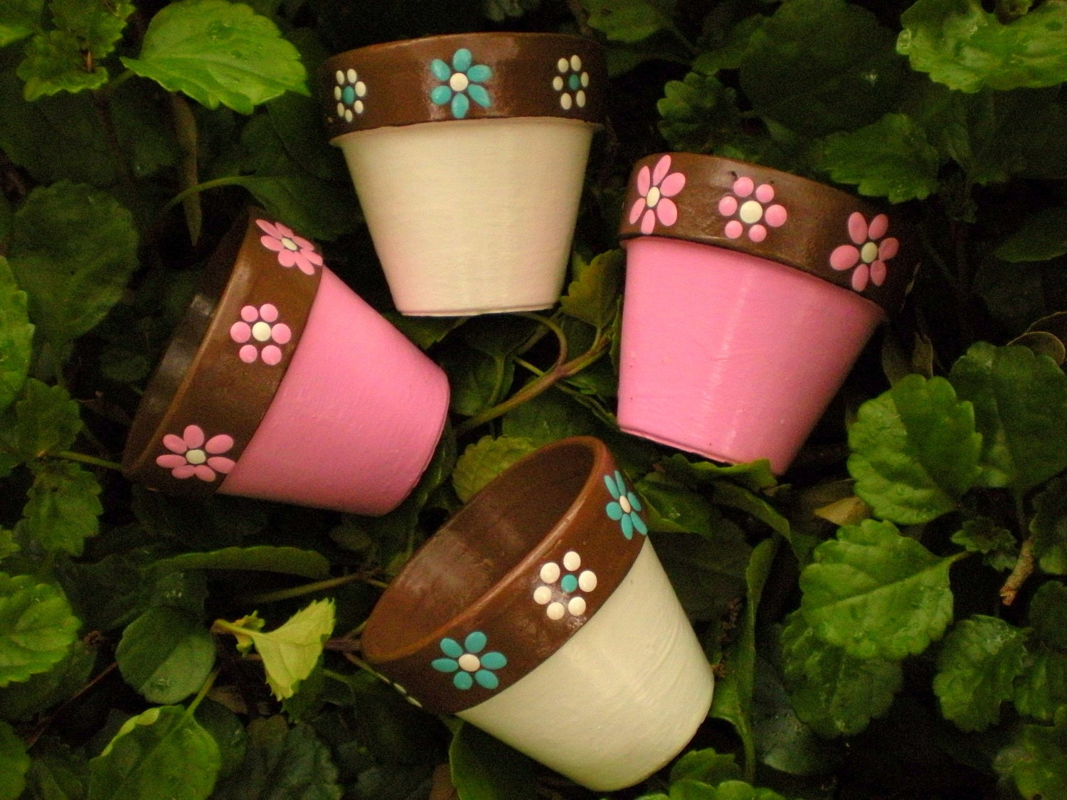 Items Similar To Small Painted Flower Pots For Wedding Favors