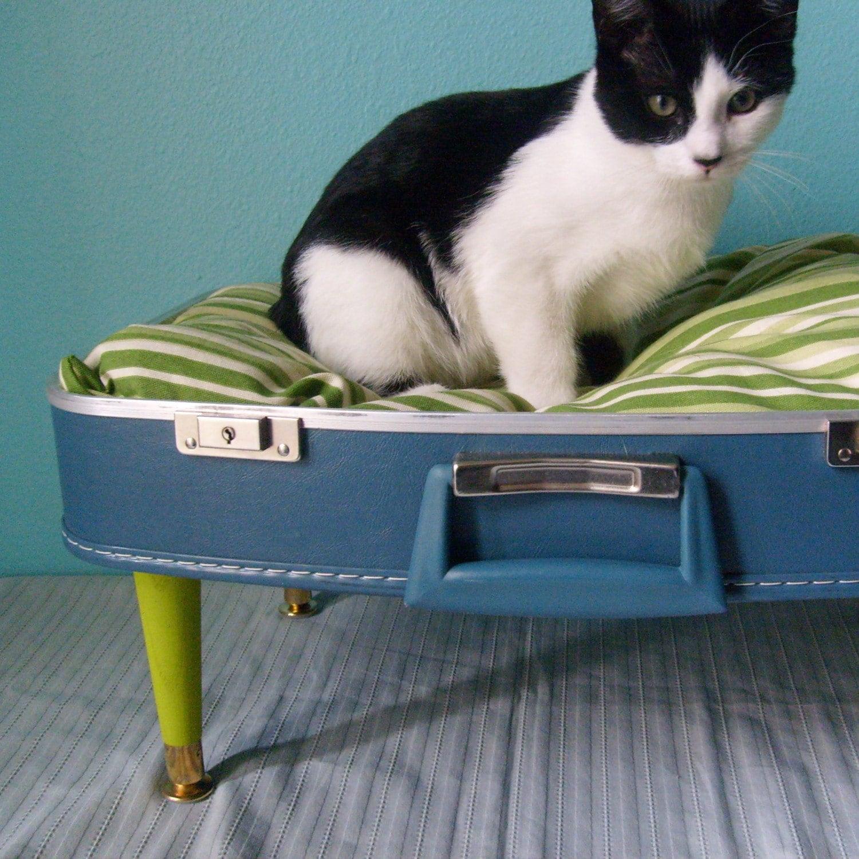 Labels: cat bed ideas, suitcase cat bed