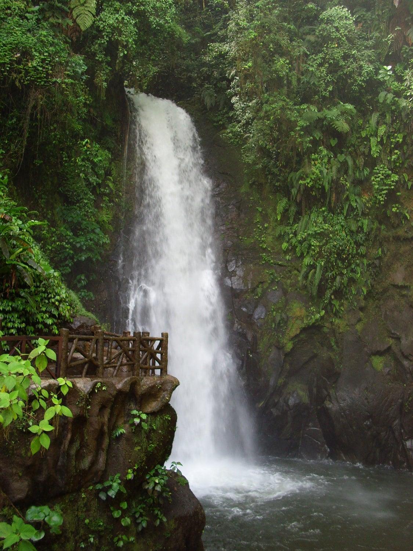 Costa Rica - Magia Blanca - La Paz Waterfall Gardens - Magnificent - Rainforest - Jungle - NTodoroff