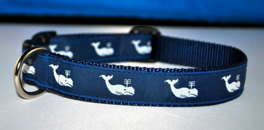 Moby White Whale - Dog Collar
