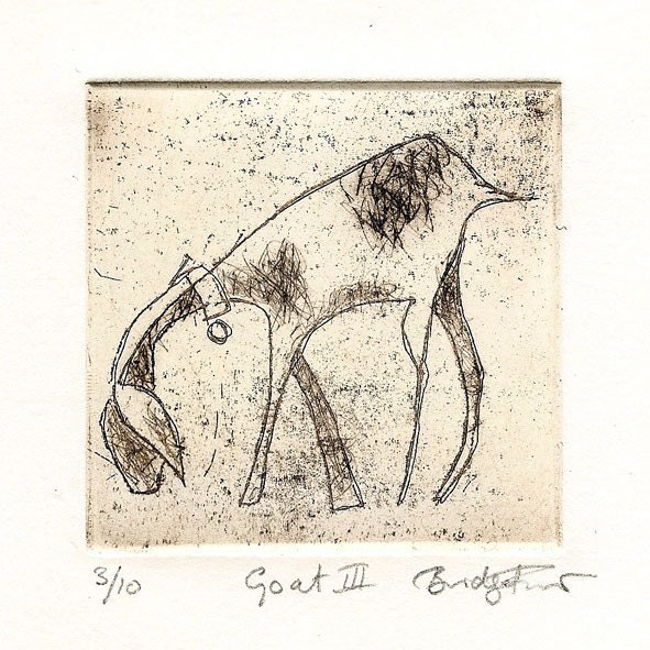 Goat III, Sepia Etching,