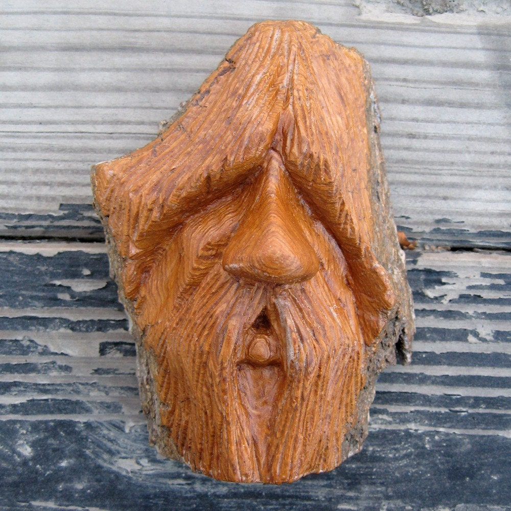 Shaggy wood carving hand carved cottonwood bark by seangrady