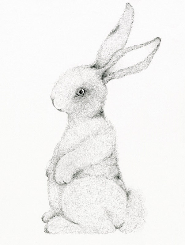 Childrens Wall Art, Fine Art Print of my Original Pencil Drawing, Bunny Drawing for Nursery room decor Woodland Drawing - ABitofWhimsyArt