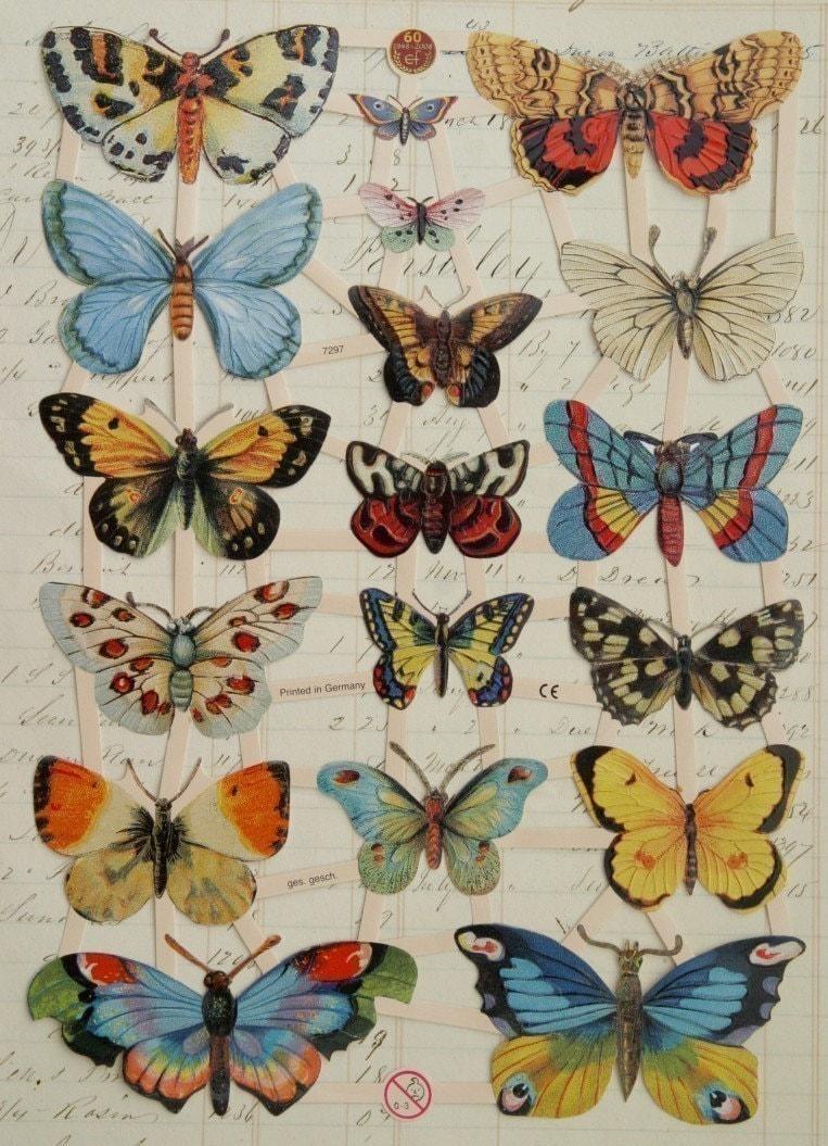 Butterflies German Victorian Scrap by MemrieMare on Etsy - photo#47