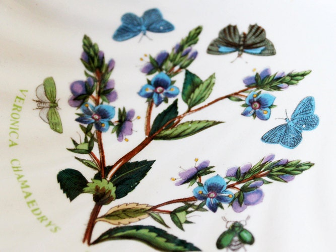 Portmeirion Floral Bowl Butterflies Botanic Garden By