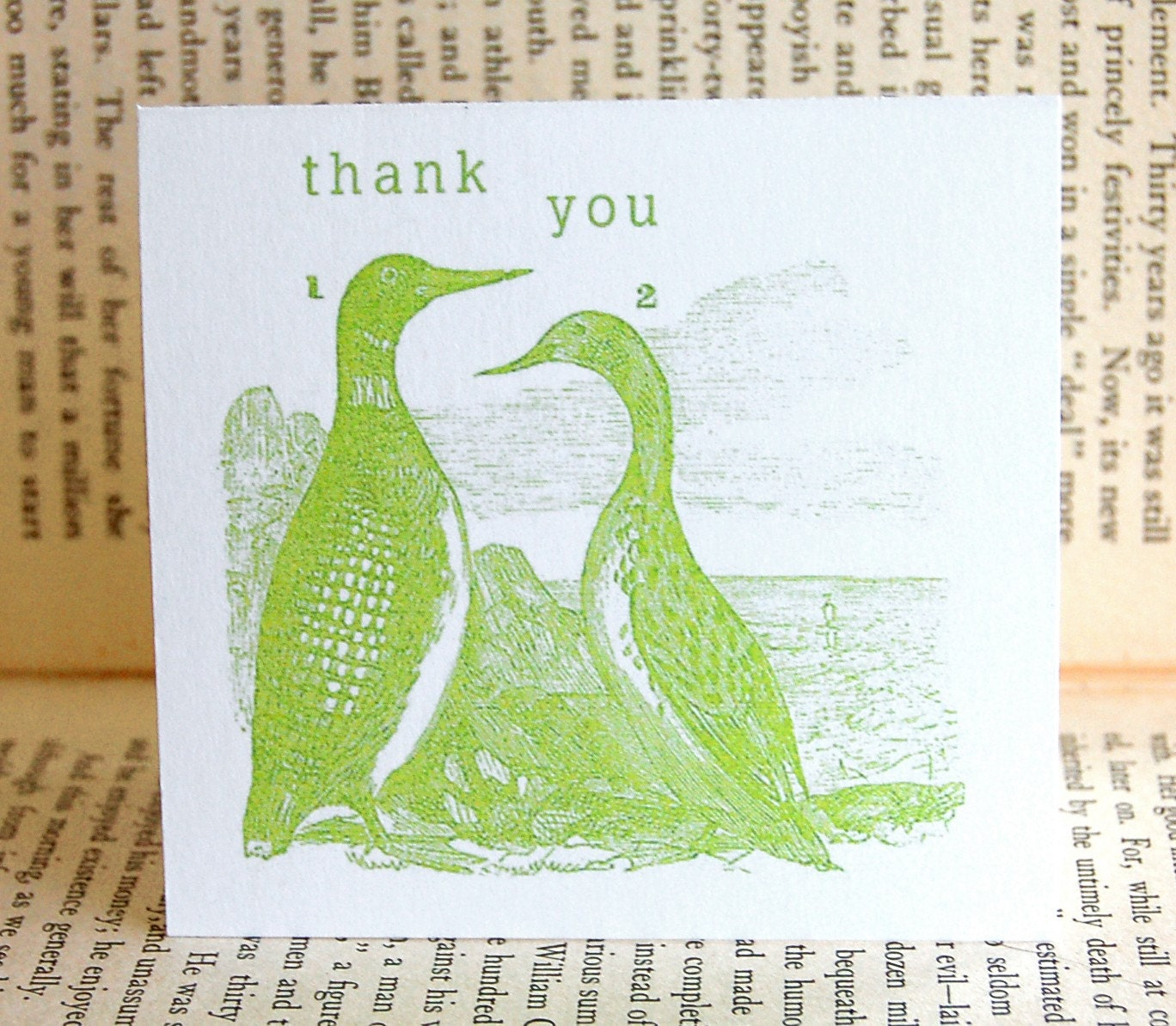 The Ducks Thank You Note Cards
