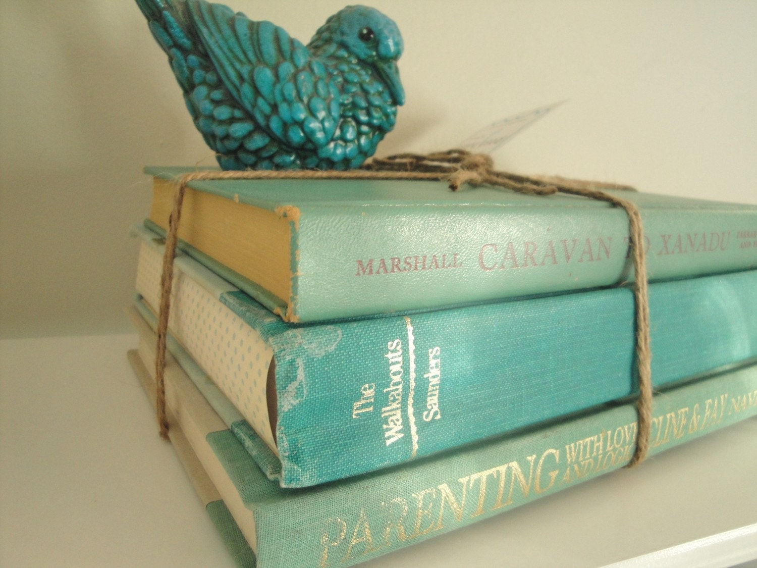 Vintage Turquoise Coordinating Book Stack