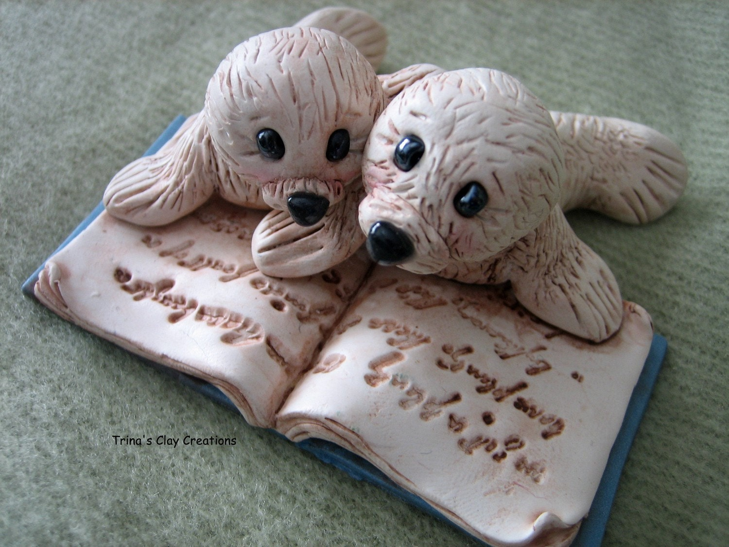 Two Little Seals Reading A Book