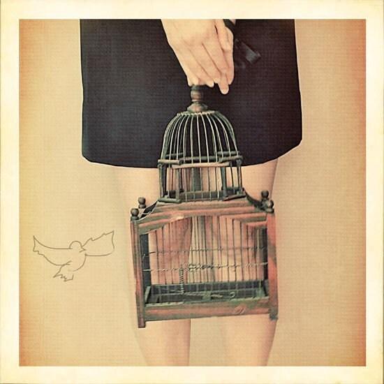 rusty cage 5x5 Fine Art Print
