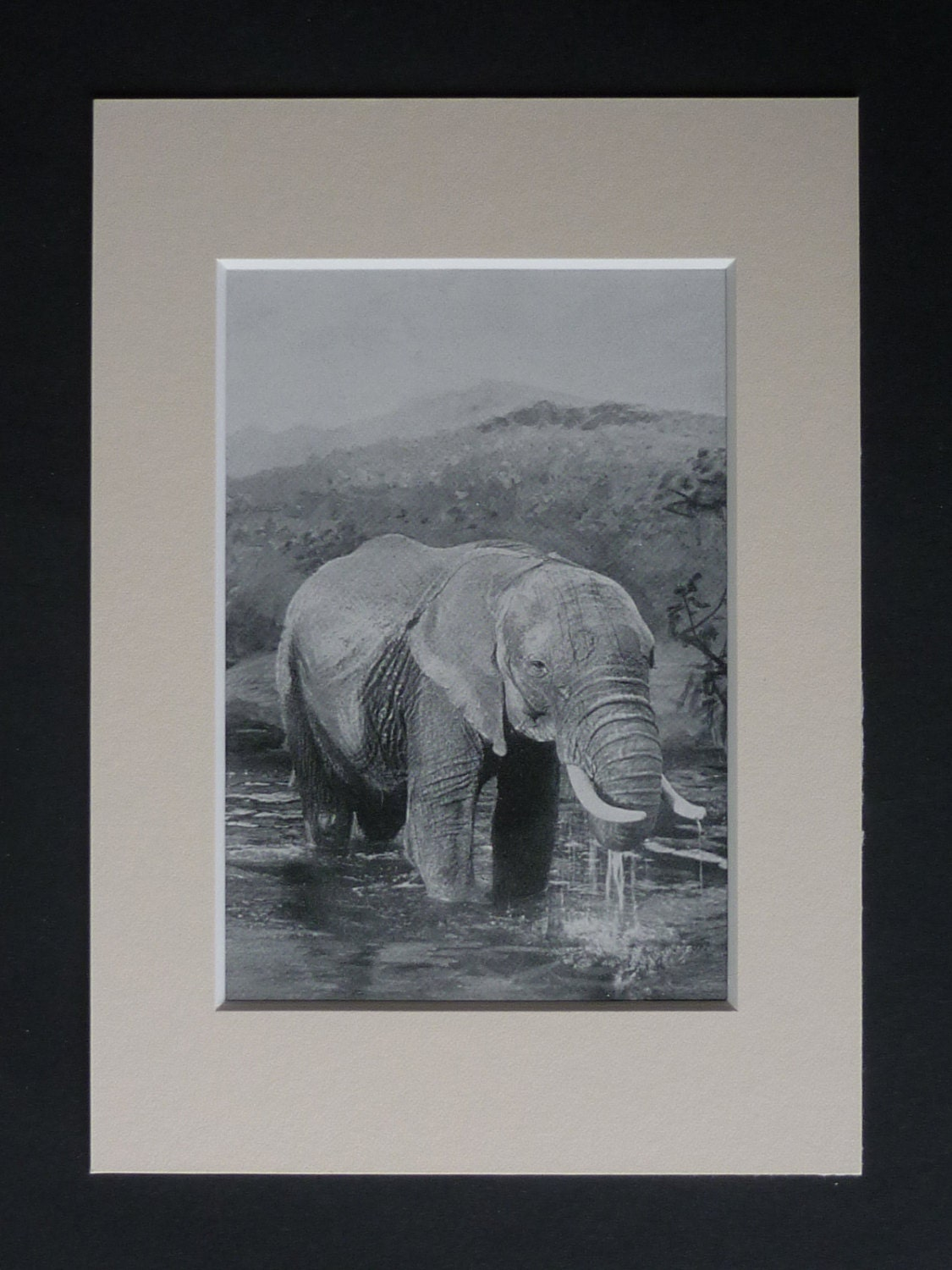 1901 Antique African Elephant Print Available Framed Nature Art Bathing Gift River Photography Decor Bathroom Picture Victorian Animal